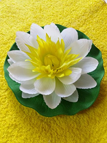 e Floating Lotus Home Garden Pond (Ponds White Beauty Detox)