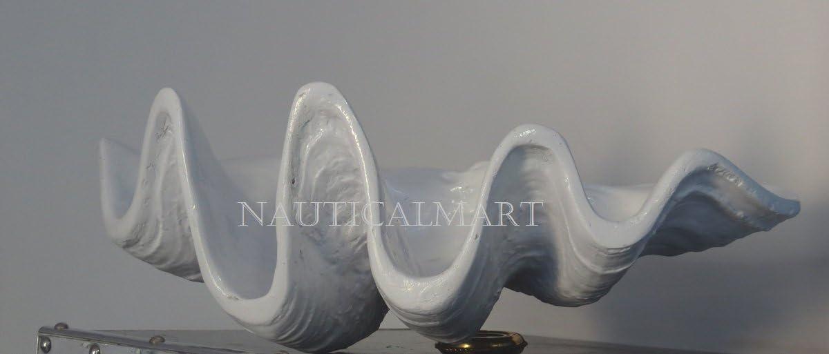 Large White Clam Shell Beautiful Seashell Bowl