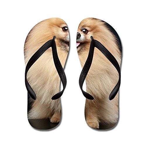 Cafepress Pomeranian Spitz Hund Sittande - Flip Flops, Roliga Rem Sandaler, Strand Sandaler Svart