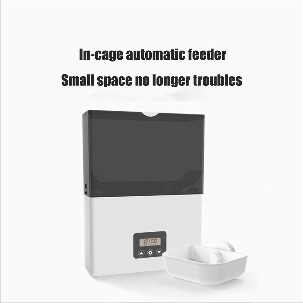 LFF.FF Pet Alimentatore Intelligente Algoritmi per Animali quantitativi quantitativi,A
