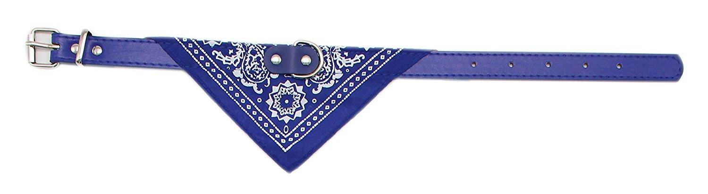 Accesorio Divertido para su Perro y su Gato M, Blue Ducomi Collar de Perro Ajustable con Pa/ñuelo