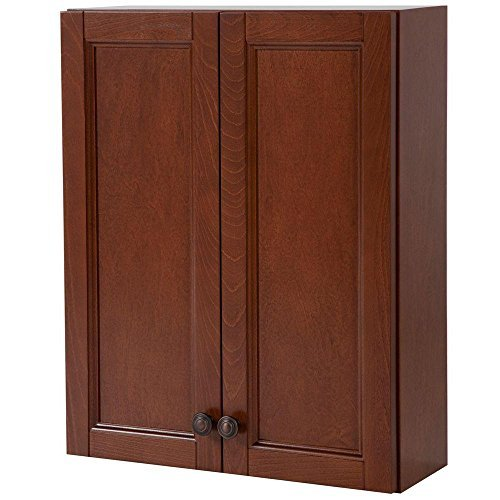 Catalina 21 in. W Over the Toilet Wall Mounted Storage Cabinet in Amber