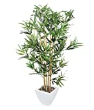 Closer2Nature Artificial 4ft Golden Bamboo Tree - Portofino Planter Not Included