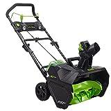 GreenWorks Pro 2601302 80V 20 Inch Cordless Deal
