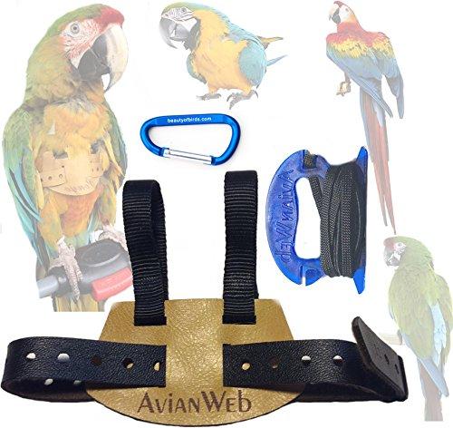 (Avianweb EZ Bird Harness with 6 Ft Leash (Average Macaws (i.e, Blue & Gold)))