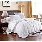 Royal Hotel's 300-Thread-Count Queen Size White Siberian Goose Down Comforter 100 percent Egyptian-Cotton 300 TC - 600FP - 36Oz - Stripe White