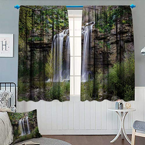 Chaneyhouse Nature Patterned Drape for Glass Door Photo of Waterfall Forest Jungle Corleone Sicily Rocks Trees Grass Landscape Waterproof Window Curtain 63