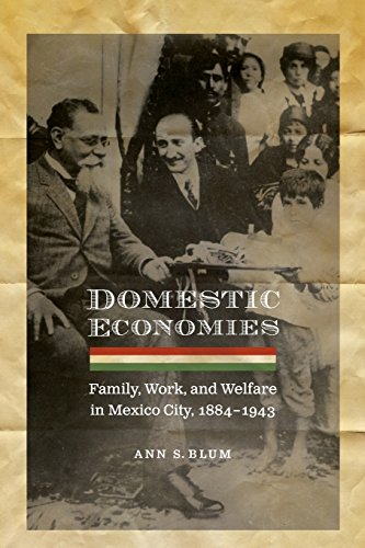 Domestic Economies: Family, Work, and Welfare in Mexico City, 1884-1943 (Engendering Latin America)