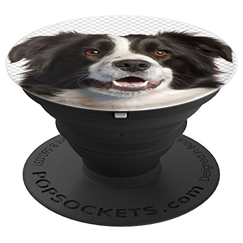 Border Collie - Anglo-Scottish Herding Dog Mans Best Friend - PopSockets Grip and Stand for Phones and Tablets