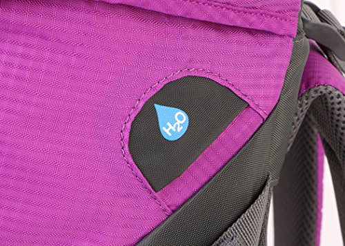 Summit Glory External Frame Hiking Backpacking Camping Travel Climbing Backpack, Rain Cover Included Lt.Purple