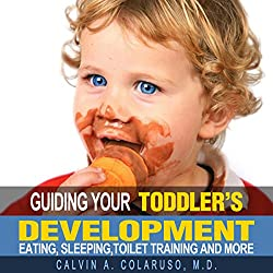 Guiding Your Toddler's Development