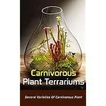 Carnivorous Plant Terrariums: Several Varieties of Carnivorous Plant