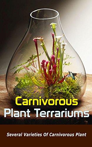 Carnivorous Plant Terrariums Several Varieties Of Carnivorous Plant