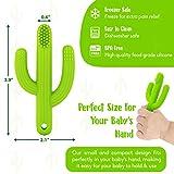 Cactus Baby Teething Toys Toothbrush