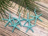 Turquoise Finger Starfish Christmas Tree Ornaments, Set of 6