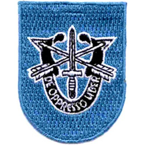 - 19th Special Forces Group Crest Flash Patch