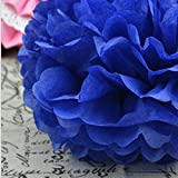 Rzctukltd 10PCS 10 Royal Blue Tissue Paper Pompoms Pom Poms Handmade Wedding Party Decorations by Rzctukltd