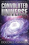 1: The Convoluted Universe: Book One