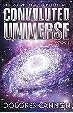 1: Convoluted Universe: Book One