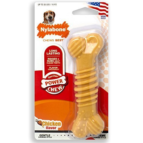 Nylabone Dura Chew Power Chew Textured Bone, Medium Dog Chew Toy, Flavor Chicken