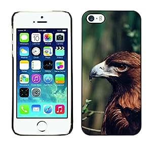 FlareStar Colour Printing Eagle Summer Green Branch Nature Brown cáscara Funda Case Caso de plástico para Apple iPhone 5 / iPhone 5S