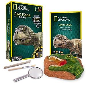 ערכה ארכאולוגית לדינוזאורים