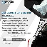 ECCPP 2pcs Liftgate and 2pcs Window Glass Lift