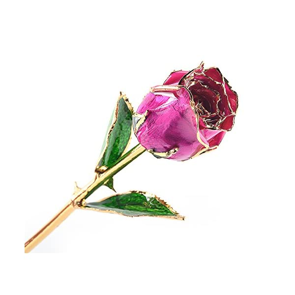 M Dream Fiance Gifts for Her, Long Stem Trimmed 24K Gold Dipped Real Rose Pink 11 Inches Set of 1,Best Gift for Valentine's Day, Mother's Day, Anniversary, Birthday, Her, Women, Girlfriends, Wife