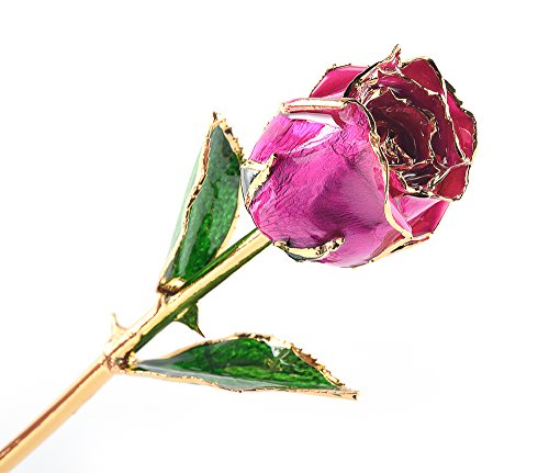 M Dream Fiance Gifts for Her, Long Stem Trimmed 24K Gold Dipped Real Rose Pink 11 Inches Set of 1,Best Gift for Valentine's Day, Mother's Day, Anniversary, Birthday, Her, Women, ()