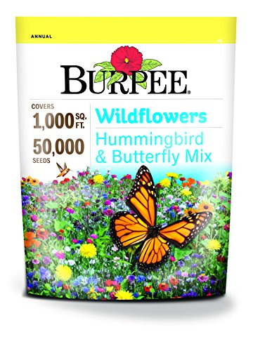 Burpee Wildflower Seed Mix for Hummingbirds and  Butterflies -