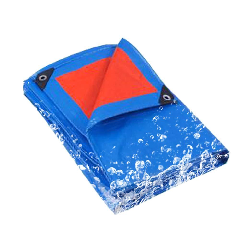 DinRoll - Panno per capannoni, telone Blu per Esterni, 3 x 6 m