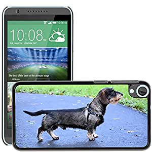 Hot Style Cell Phone PC Hard Case Cover // M00115238 Cute Dachshund Puppy Canine Dog // HTC Desire 820
