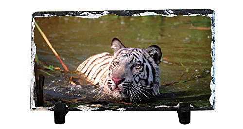 - DKLZY Personalized Slate Plaque - Wallpaper White Tiger Slate Signs and slate paintings 20x15cm(7.87x5.90inch)