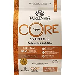 Wellness CORE Natural Grain Free Dry Cat Food, Original Turkey & Chicken, 12-Pound Bag