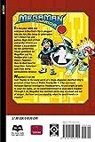 MegaMan NT Warrior, Vol. 10 (v. 10)
