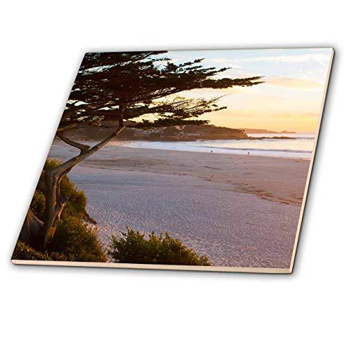 Tile Carmel - 3dRose Danita Delimont - California - Carmel, California, cypress tree and waves at sunset on ocean. - 12 Inch Ceramic Tile (ct_314602_4)