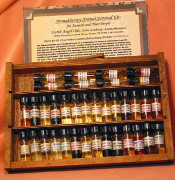 Aromatherapy Earthangeloils Essential Oils Kit by Helen Stembridge-