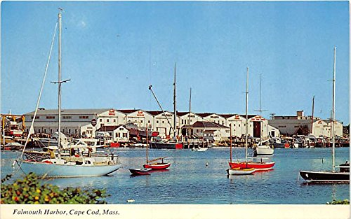 Bat Havens Cape Cod Falmouth Harbor Massachusetts Postcard