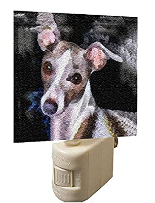 Italian Greyhound - Lilly - Night Light by Doggylips