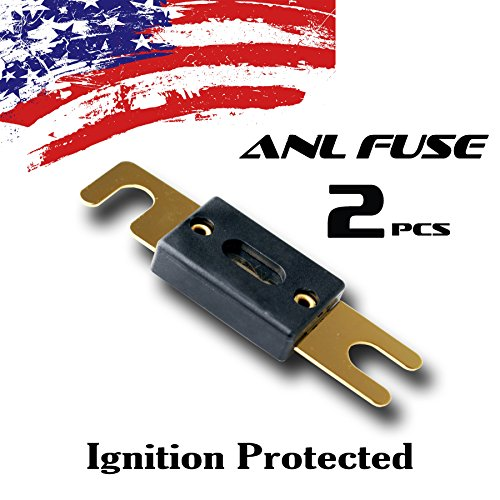 2 Pack 100 AMP Gold ANL Fuse 100A Car Truck Boat Marine (Gold Used Electronic Equipment)