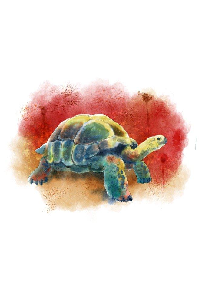 [定休日以外毎日出荷中] Tortoise – 水彩 Canvas Tote Bag Bag LANT-86441-TT LANT-86441-TT x B07C9MT6KQ 24 x 36 Signed Art Print 24 x 36 Signed Art Print, ワークショップコンドー:145ff43e --- arianechie.dominiotemporario.com