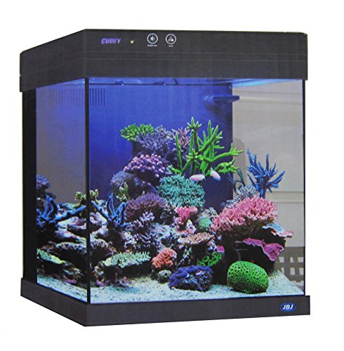JBJ 20 Gallon Black Cubey Aquarium by Cubey