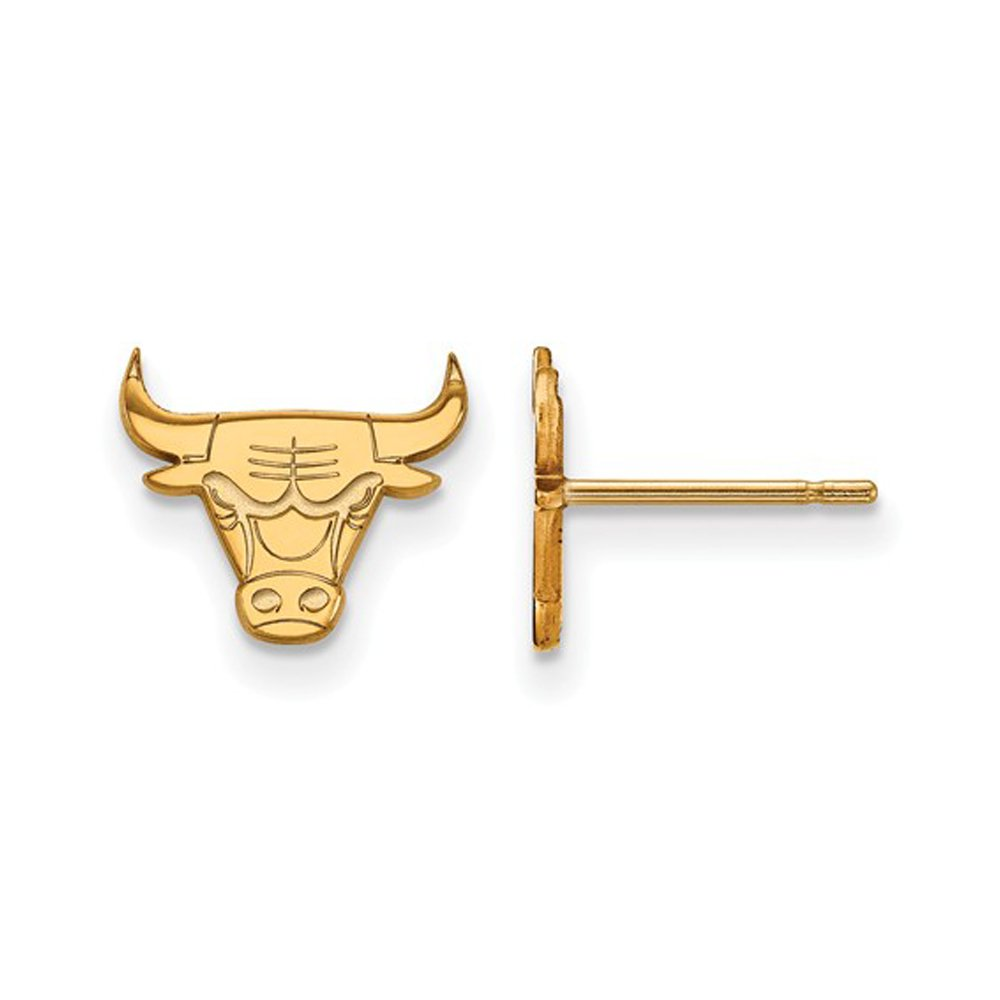 NBA Chicago Bulls X-Small Post Earrings in 10K Yellow Gold by LogoArt