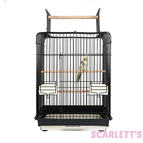 scelte con prezzo basso Phoenix Phoenix Phoenix piccola gabbia per uccelli  classico senza tempo
