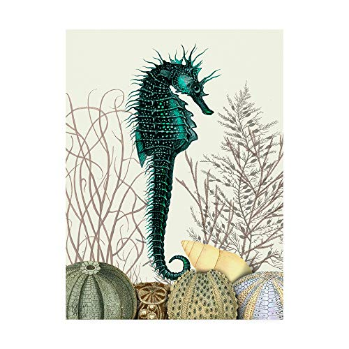 Trademark Fine Art Seahorse and Sea Urchins by Fab Funky, 18x24
