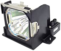 Electrified 003-120061 Replacement Lamp