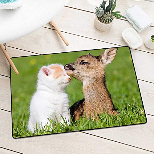 BCVHGD Front Door mat Carpet 893758 Beauty Cute Amazing Animal Deer Child and cat in Farm Machine Washable Door mat W29.5 x L39.4 Inch
