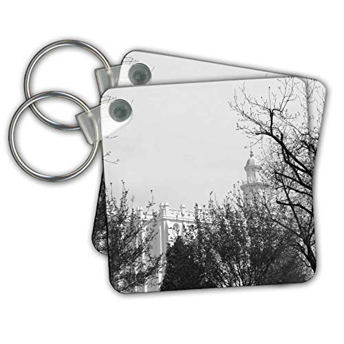 Jos Fauxtographee- Black and White Temple - An Unsaturated image of trees and the St. George Temple - Key Chains - set of 2 Key Chains (kc_302251_1)