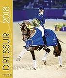 Dressur 2018: Pferdesport Dressur