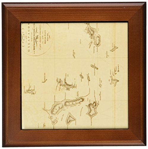 3dRose ft_79332_1 Antique Map of Galapagos Islands- Vintage Art-Framed Tile, 8 by 8-Inch